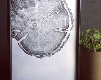 Tree ring art, cropped pine tree, pine tree, nature art, forest art, tree ring print, tree print, woodblock print, Linton, Tree art, trees