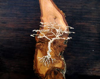 Sterling silver tree wall sculpture on Olive wood. tree of life silver wire sculpture. cliff tree