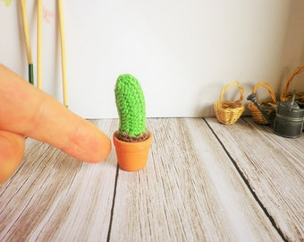 Very very fine crochet Cactus, miniatures, small pot cactus 5 cm, my creation, decorations, plants.