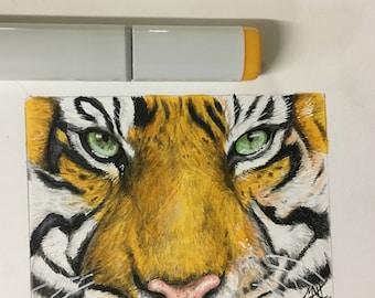 Tiger artist sketch card