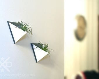 Air plant set, Wall planter, Air plant holders, Geometric terrarium, Air planter gifts, Air plant terrariums, Geometric wall planter