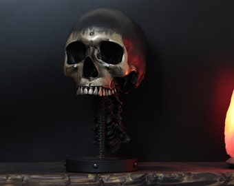 The Mongrel - Black & Gold Full Scale Life Size Realistic Faux Human Skull Bust With Display Stand / Art / Statue / Ornament / Home Decor