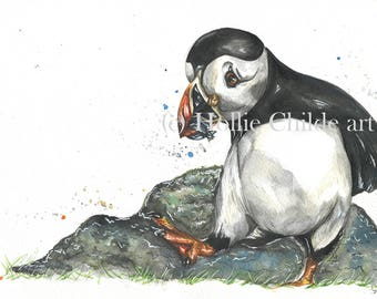 Puffin 'Another great catch'  Limited edition print