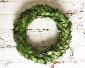 "Boxwood Wreath, Preserved Boxwood Wreath, 8"" boxwood wreath"