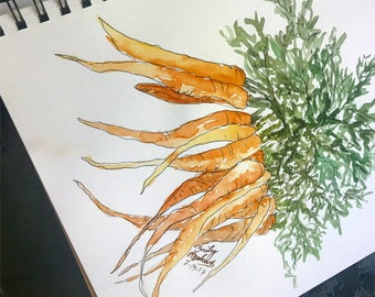 Carrot Watercolor