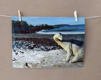 Dinosaur Brontosaurus Photo Print, Beach Vacation