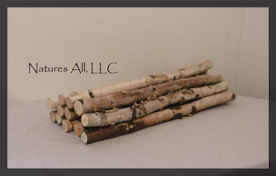 Decorative White Birch Sticks/20 Inch Lengths/12 Piece White Birch Set/Rustic Home Decor/Shipping Included: Item# WB-3611
