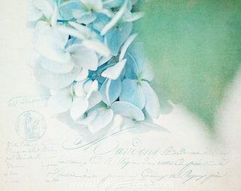 French Country Wall Decor, Blue Flower Wall Canvas, French Cottage Decor, Blue and Green Wall Art, Shabby Chic Hydrangea Photo, Nursery Art