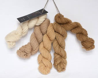 Organic wool hand dyed with natural plant dyes - 5 mini skeins  - Schafwolle No.03