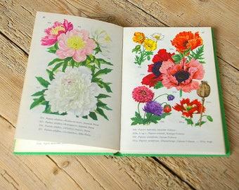 Vintage flower book guide.Vintage flower Floral field guide.Botanical.Vintage flower illustration.Book pages flowers.Tulips poppies dahlia