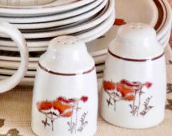 RESERVED FOR DARLENE Royal Doulton Salt and Pepper Shakers