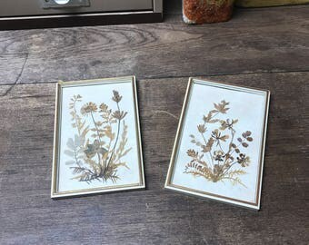 Vintage Dried Flower Wall hangings Set of 2 Germany