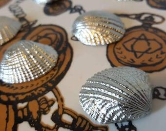 Seashells cast in pewter
