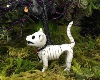 Miniature Cat / Kitten Skeleton
