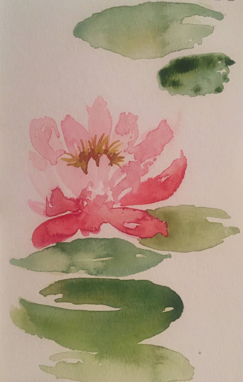 Banner Lake Water Lily