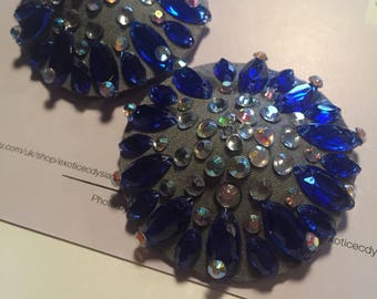 Silver and Royal Blue Pasties