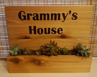 Cedar wall planter for succulents