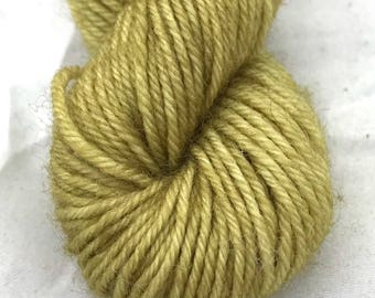 Earth Gold - BFL 4 Ply Mini