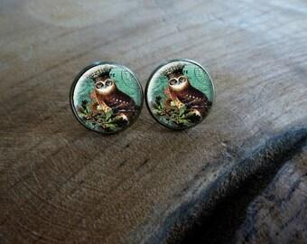 Boucles d'oreilles puces cabochon puce  le hibou couronné Boucles d'oreilles rétro vintage, Boucles d'oreilles cabochon Hibou couronne