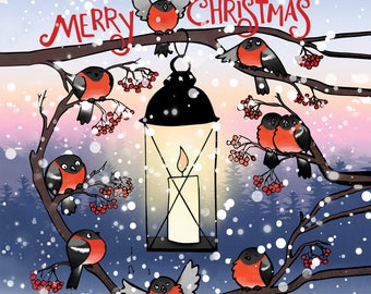 Bullfinch christmas postcard, postcard