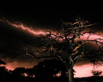 African Lightning