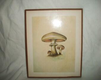 Vintage Mid Century Mushroom Wall Decor