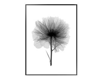 Flower print / wash flower