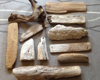 Beach Driftwood collected in the Pacific NW - Lot 3