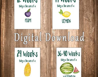 DIGITAL DOWNLOAD, Pregnancy Milestone Cards, Surrogacy Milestone Cards, Set of 13