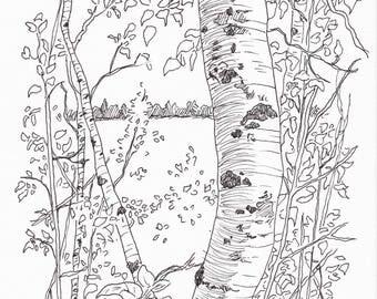 Mackworth Island, ME (print reproduction)