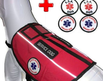 ALL ACCESS CANINE™ Emotional Support Animal (Esa) Dog / Service Dog Vest Custom Reflective Harness Package Bundle
