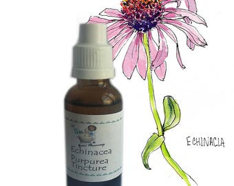 Echinacea purpurea Root Tincture