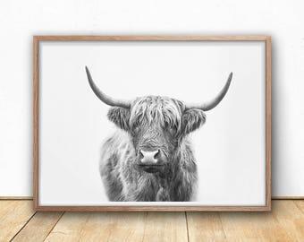 Highland Bull Digital Print, Farm Photography, Black And White, Highland Cow Art Print, Printable Animal Wall Art, Scottish Cow Poster
