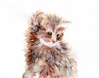 Watercolour Kitten Print, Wall Art