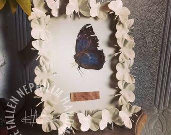 Pressed Fairy in a Frame - Preserved Fae - Macabre Oddities - Curio Oddity - Vintage - Wall Hanging - Butterfly - Taxidermy - Brown