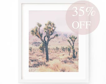 Joshua Tree Print - Mojave Desert Photography - Nature Printable