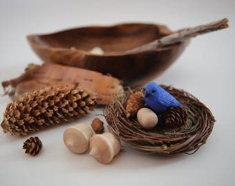 Nature Inspired Bluebird Nest, Waldorf, Reggio, Montessori, Charlotte Mason, Nature Study, Woodland, Forest, Biology, Vintage Wooden Tray