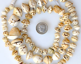 Long 32 Inch Strand of Old Excavated Shell Beads - Vintage African Trade Beads - EXSh25