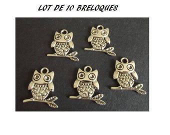set of 10 charms OWL on a silver plated branch (D44)
