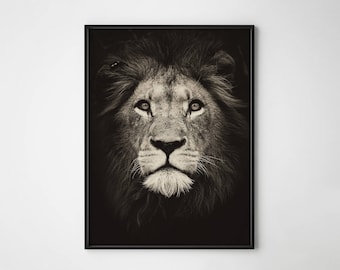 Lion, Lion print, Lion poster, Scandinavian design, Wall art, Interior design, Black and white, Nordic design, King, Jungle, Wild life