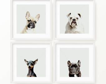 Gang of Four - Dog Wall Art, Dog Photography, Dog Digital Print, Dog Poster, Printable Art, Digital Download, Instant Download Printable Art