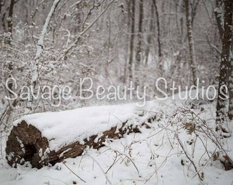 Digital Backdrop w/Snow, Digital Download, Digital Winter Backdrop, Digital Prop, Snow Scene, Christmas Backdrop, Composite Photography, Log