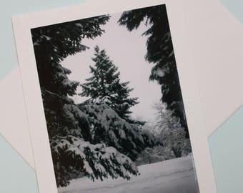Winter Blank Photo MountGreeting Card