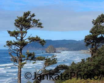 Metal print, art print, coastline photography, Oregon coast, Oregon, pine trees, ocean, Pacific Northwest, canvas, canvas wrap