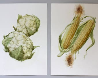 Diptych art Corn and Cauliflower Watercolor painting, Original kitchen diptych painting, Vegetables Art, Realistic Kitchen art Corn gift her