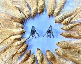 Sea urchin Pluteus Studs