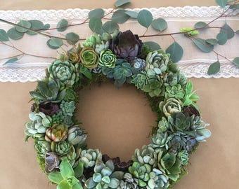 "Full 8"" Succulent Wreath, Grapevine Wreath, Rainbow Living Succulent Wreath"