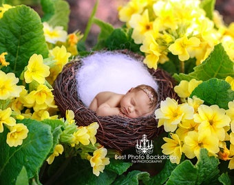 Floral Newborn Digital background/backdrop nest. Newborn overlay with yellow flowers. Digital flowers backdrop for baby girls. JPEG file