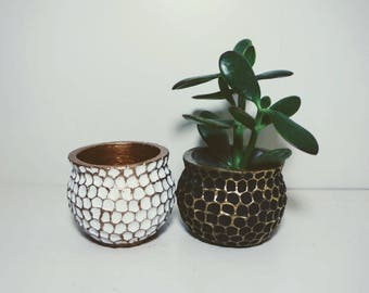 small cement planter