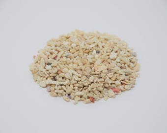 Bulk Crushed Coral / 3 lb Bag / Grade #5 / Real from the Ocean/ Wholesale / DIY Projects / Terrariums / Coral Sand